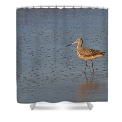 Marbled Gotwit At Low Tide Shower Curtain by Bob and Jan Shriner