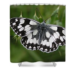 Marbled White Shower Curtain