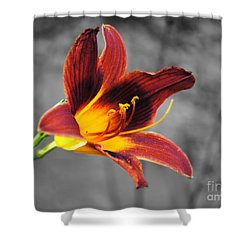 Margo's Lily Shower Curtain