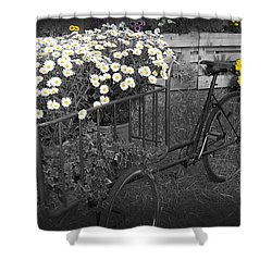 Marguerites And Bicycle Shower Curtain