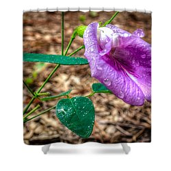 Shower Curtain featuring the photograph Mariana by Rob Sellers