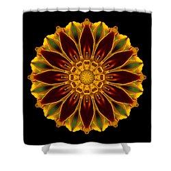 Marigold Flower Mandala Shower Curtain by David J Bookbinder