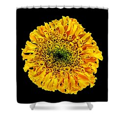 Marigold Shower Curtain