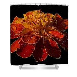 Marigold Tagetes Shower Curtain by Michael Moriarty