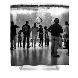 Marine Spectators Shower Curtain by Lynn Palmer