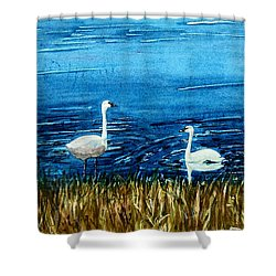 Marion Lake Swans Shower Curtain