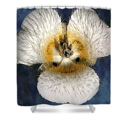 Mariposa Lily Two Shower Curtain by Belinda Greb