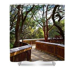 Maritime Forest Boardwalk Shower Curtain by Kathryn Meyer