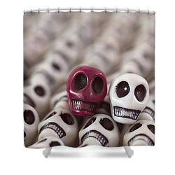Maroon And White Shower Curtain by Mike Herdering