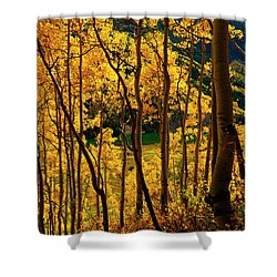Maroon Lake Gold Shower Curtain by Jeremy Rhoades