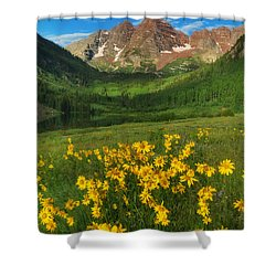Maroon Summer Shower Curtain by Darren  White