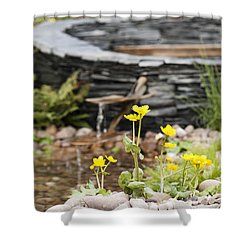 Marsh Marigolds Shower Curtain by Anne Gilbert