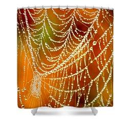 Marsh Pearls Shower Curtain by Carol Groenen