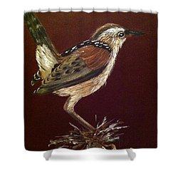 Marsh Wren Shower Curtain