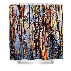 Marshgrass Shower Curtain by Karen Wiles