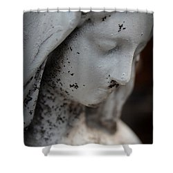 Mary In The Garden Shower Curtain by Lynn Sprowl