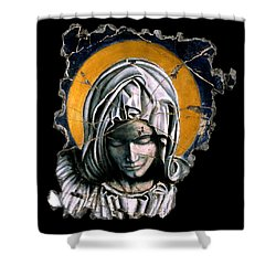 Mary Super Petram Shower Curtain by Steve Bogdanoff