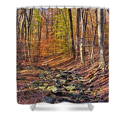 Maryland Country Roads - Autumn Colorfest No. 6 - Catoctin Mountains Frederick County Md Shower Curtain by Michael Mazaika