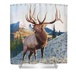 Mary's River Morning Shower Curtain
