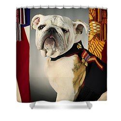Mascot Of The United States Marine Corps Shower Curtain