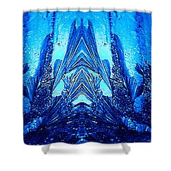 Mask Shower Curtain by Richard Thomas
