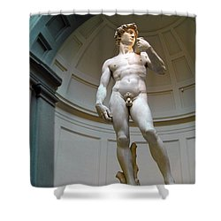 Masterpiece David.florence Shower Curtain by Jennie Breeze