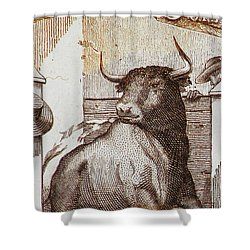 Matador 1 Shower Curtain