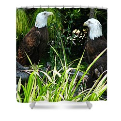 Shower Curtain featuring the photograph Mates by Greg Patzer