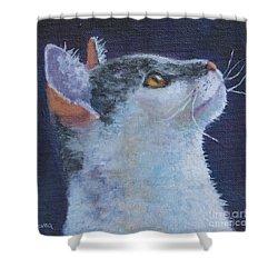 Matisse Shower Curtain by Jana Baker