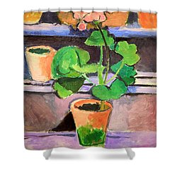 Matisse's Pot Of Geraniums Shower Curtain by Cora Wandel