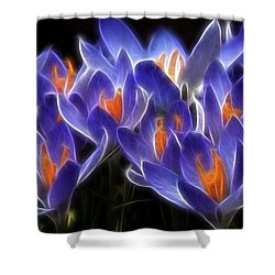 Mauve Shower Curtain