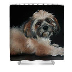 Maxi Shower Curtain by Cynthia House