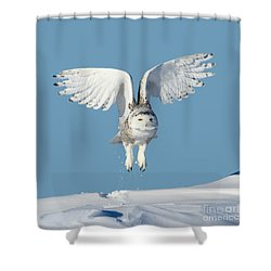 Maximum Lift Shower Curtain by Heather King