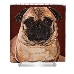 Maxx Shower Curtain