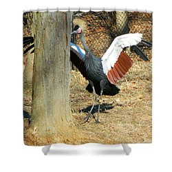 May I Have This Dance? Shower Curtain by Emmy Marie Vickers