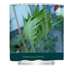 May Peace On Earth Shower Curtain