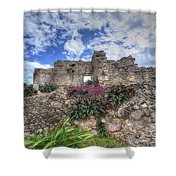 Shower Curtain featuring the photograph Mayan Ruin At Tulum by Jaki Miller