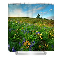 Meadow Gold Shower Curtain by Mike  Dawson