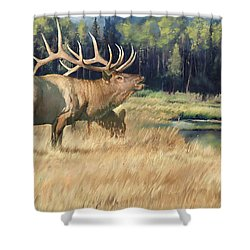 Meadow Music Shower Curtain by Rob Corsetti