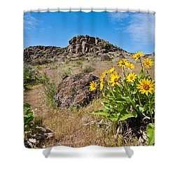 Shower Curtain featuring the photograph Meadow Of Arrowleaf Balsamroot by Jeff Goulden