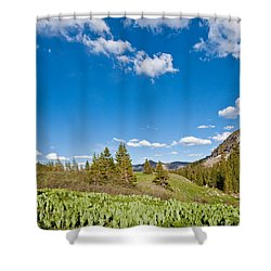 Shower Curtain featuring the photograph Meadow Of False Hellebore by Jeff Goulden
