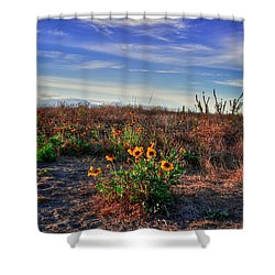 Shower Curtain featuring the photograph Meadow Of Wild Flowers by Eti Reid
