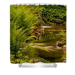 Meandering Shower Curtain by Sabine Edrissi