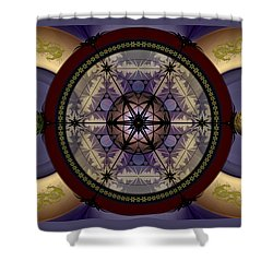 Mechanical Wonder Shower Curtain
