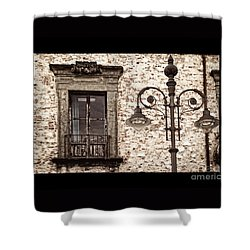 Medieval And Modern Shower Curtain