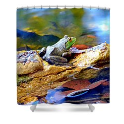 Shower Curtain featuring the photograph Meditation by Deena Stoddard