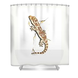 Mediterranean House Gecko Shower Curtain by Cindy Hitchcock