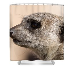 Meerkat Mug Shot Shower Curtain
