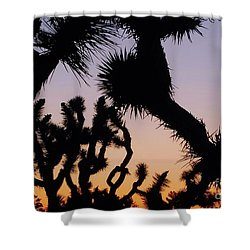Shower Curtain featuring the photograph Meet And Greet by Angela J Wright