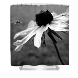 Meet In The Middle Shower Curtain by Gilbert Photography And Art